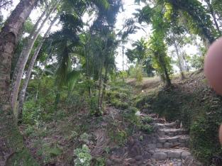 Aufstieg zum Cottage