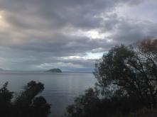 Bulli Point