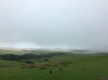 Cape Reinga (Sanddünen am Horizont)