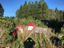 Freecamping am Pukaki Lake
