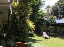 Hostel MiCasa San Jose Garten