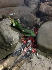 Fisch im Blatt im Feuer