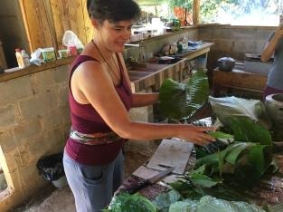 Auswahl und Vorbereitung der Bananenblätter