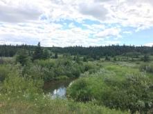 Über den Maple Creek hinweg würde geschossen